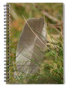The Feather Spiral Notebook