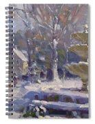 The Frozen Fountain Spiral Notebook