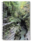 The Gorge Trail Spiral Notebook