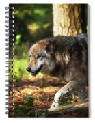 The Gray Wolf Spiral Notebook