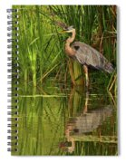 The Great One At Home Spiral Notebook