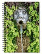 The Hundred Fountains Spiral Notebook