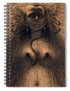 The Idol Of Perversity, 1891 Spiral Notebook