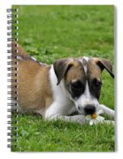 The Little One Spiral Notebook