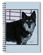 The Magnificent Guardian Of The Gate Spiral Notebook