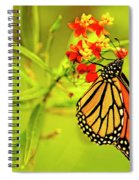 The Monarch Butterfly Spiral Notebook