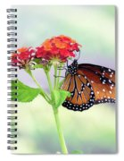 The Queen Of Butterflies  Spiral Notebook