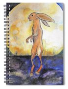 The Rabbit Prince Spiral Notebook