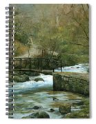 The River Psirzha Spiral Notebook