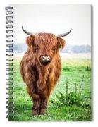 The Scottish Highlander Spiral Notebook