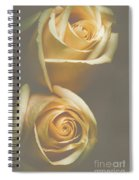 The Soft Shadows Spiral Notebook
