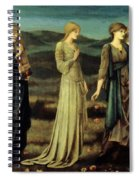 The Wedding Of Psyche 1895 Spiral Notebook