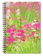 The World Laughs In Flowers - Primula Spiral Notebook