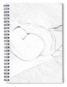 Thickness 4 Spiral Notebook