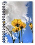 Things Are Looking Up - Wide Format Spiral Notebook