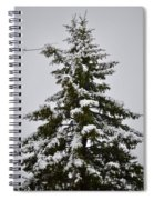 This Christmas Spiral Notebook