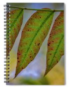 Three Leaves Spiral Notebook