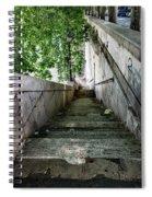 Tiber Steps Spiral Notebook