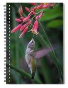 Tiny Acrobat Spiral Notebook