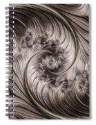 Titanium Double Fractal Spiral Spiral Notebook