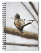 Titmouse Pull-ups Spiral Notebook