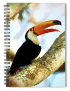 Toucan On A Tree Spiral Notebook