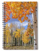 Touch Of Fall Spiral Notebook