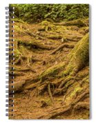 Trail Of Roots Spiral Notebook