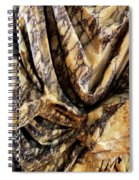 Trajan's Marble Spiral Notebook