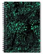 Trance Tree Neon Dark Spiral Notebook