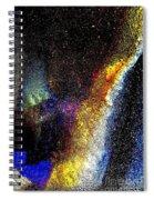 Treasure Trove Spiral Notebook