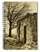 Tree And Ruins Spiral Notebook