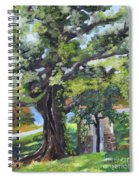 Tree At Cartecay Spiral Notebook