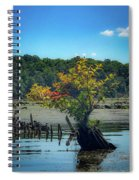 Tree In Mallows Bay Spiral Notebook