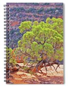 Trees Plateau Valley Colorado National Monument 2871 Spiral Notebook