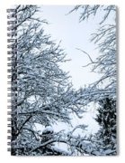 Trees With Snow Spiral Notebook
