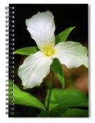 Trillium 1 Spiral Notebook