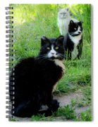 Trio In The Grass Spiral Notebook
