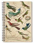 Trochilus - Hummingbirds Spiral Notebook