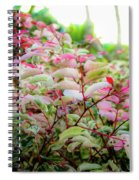 Tropic Leaves Spiral Notebook