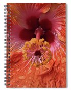 Tropical Hibiscus Spiral Notebook