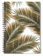 Tropical Palm Leaf Pattern 6 - Tropical Wall Art - Summer Vibes - Modern, Minimal - Brown, Copper Spiral Notebook