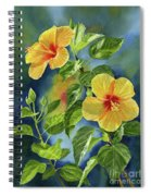 Tropical Yellow Orange Hibiscus With Background Spiral Notebook