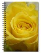 Try A Little Tenderness Spiral Notebook