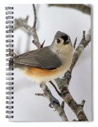 Tufted Titmouse Winter Tranquility Spiral Notebook