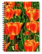 Tulips 2019d Spiral Notebook
