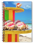 Turks And Caicos Conchs On A Spool Spiral Notebook