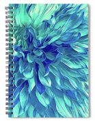Turquoise Love  Spiral Notebook