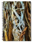 Twisted Tree Limbs Spiral Notebook