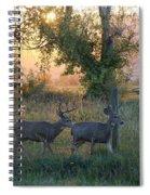 Two Deer Sunset Spiral Notebook